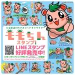 モモちん広告PR(20151202)