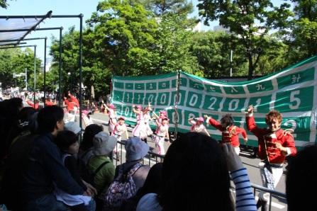 2016yosakoi (7)